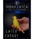 Latex Canary