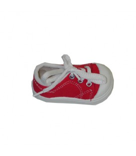 Ring in Shoe