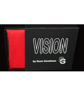 Vision ( Stardard Business Card Size )