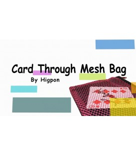 Card Through Mesh Bag